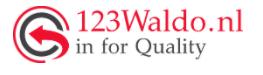 logo waldo